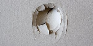 Avoid nightmare tenants and holes in walls